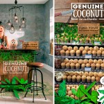 genuinecoconut01